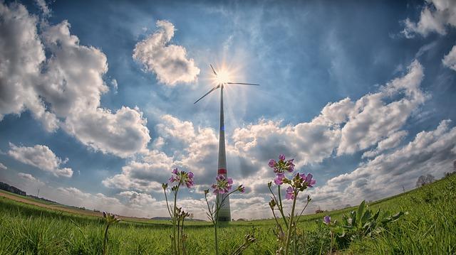 segunda subasta de renovables